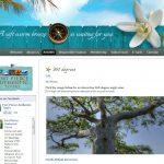 12. website design port st. lucie florida