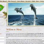 19. port st. lucie fl website design agency
