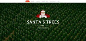 23. website designeres port saint lucie fl