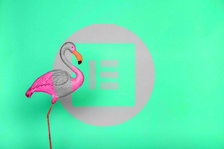 flamingo Elementor Website Designer UX/UI