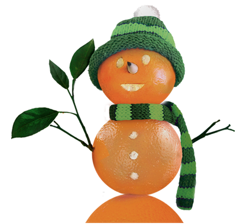 Orange Snowman Marketing Made Fresh!