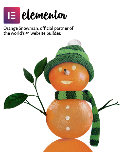 Orange Snowman, official partner of the world's #1 website builder.