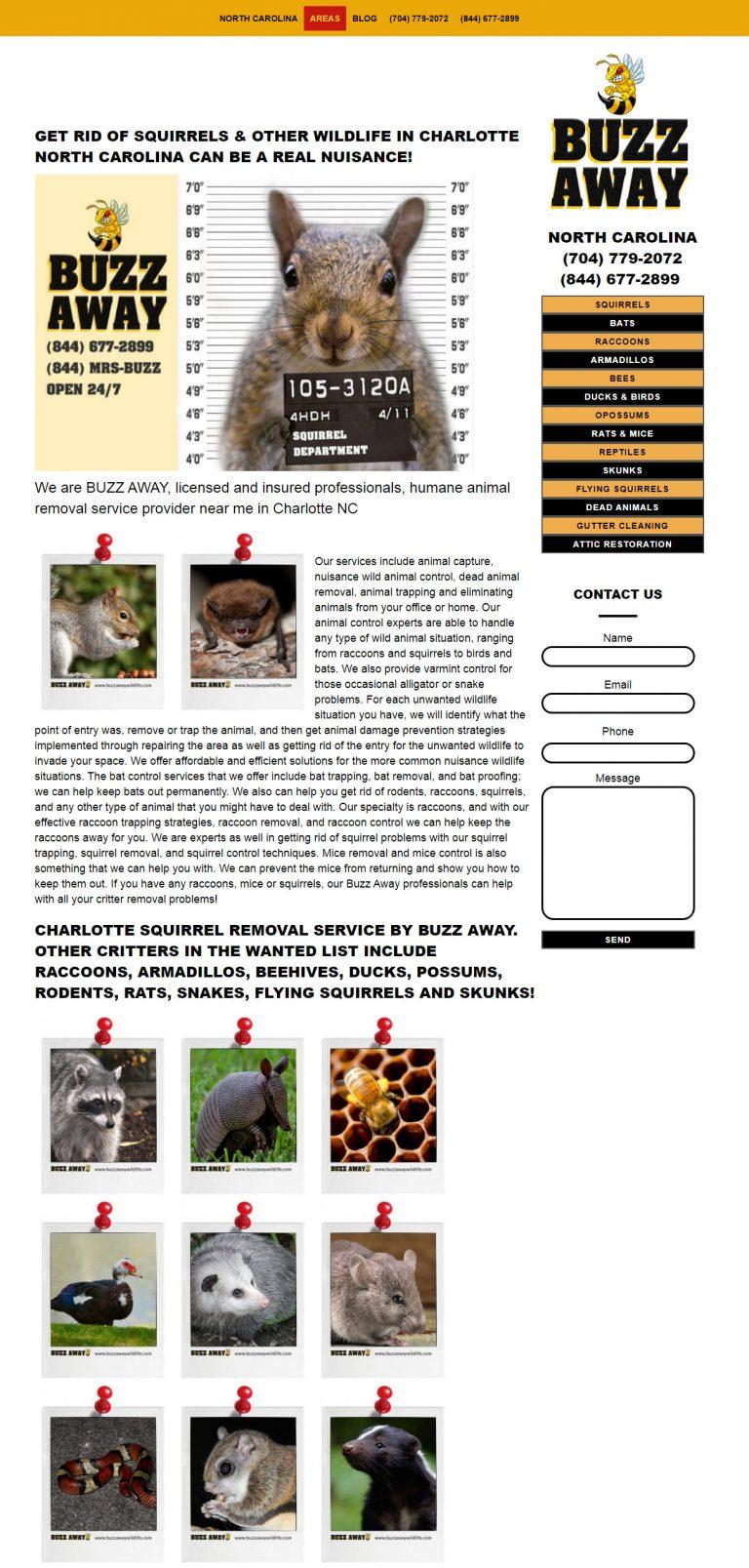 Get rid of squirrels BUZZ AWAY Charlotte North Carolina