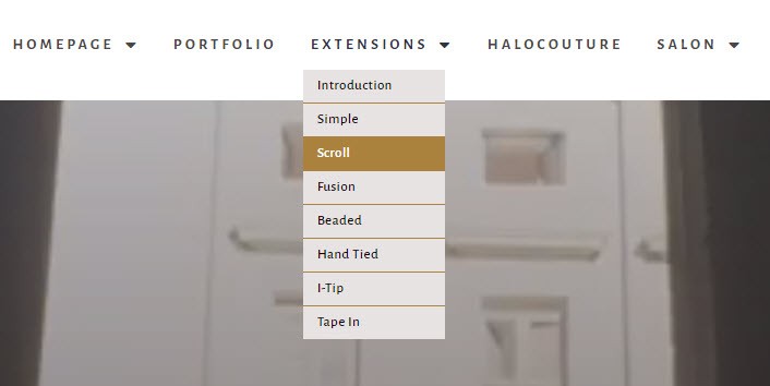 Hair Extensions Online Marketing 68