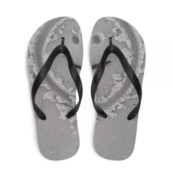Flip-Flops 1